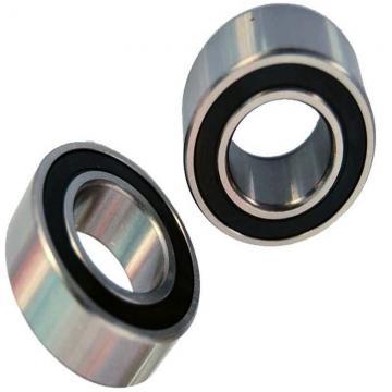 IKO Linear Bearing Lm10uu Lm12uu Lm13uu Linear Ball Bearing for Wholesales