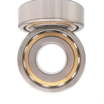 Koyo NACHI NSK NTN Bearing N1922-K-M1-Sp Cylindrical Roller Bearings 110*150*20mm