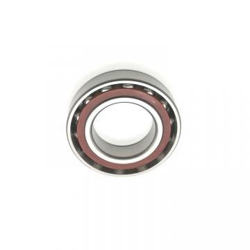 NSK SKF 30*55*19mm Double Row Cylindrical Roller Bearing Nn3006-as-K-M-Sp